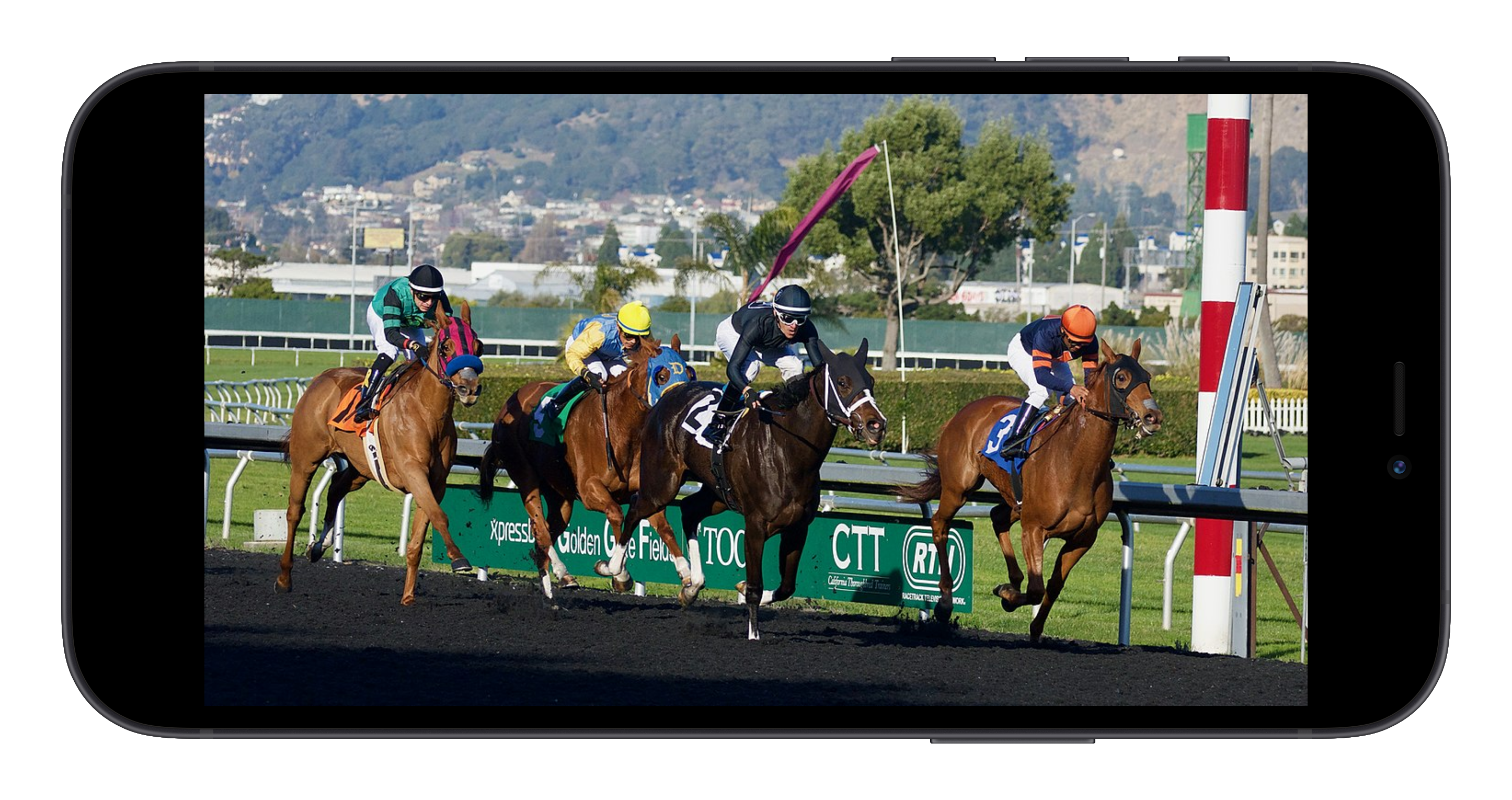 horse racing on a mobile